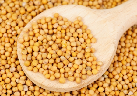 Mustard seeds in wooden spoon and over as  background