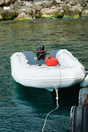 Motor boat is white with a red engine on the dock photo