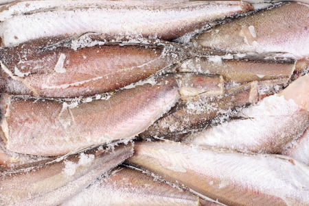 cod fish: Frozen hake fish as food background