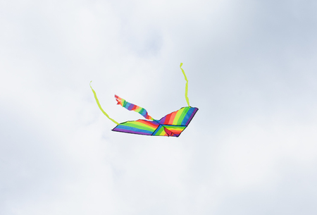 grey  sky: flying kite in the air against the grey sky