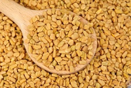 fenugreek: Fenugreek seeds in wooden spoon as food background
