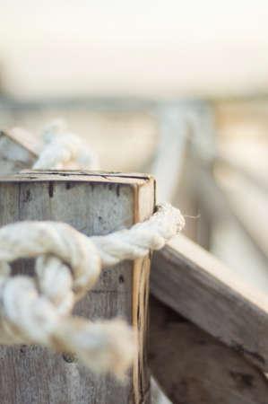 The sea cord Фото со стока