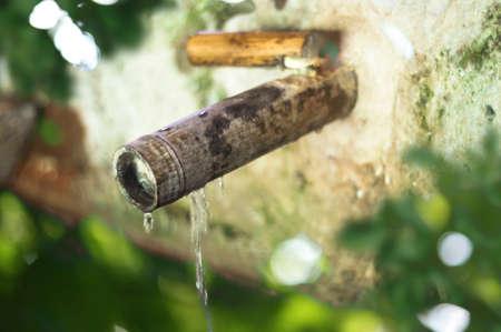 bamboo fountain: Water bamboo fountain