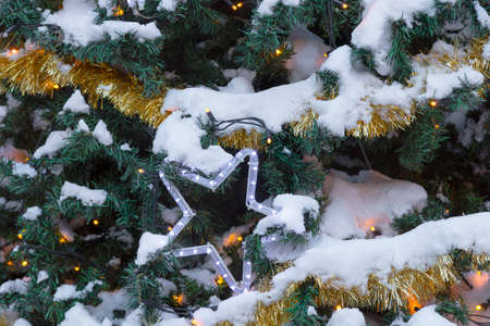 many branches: Many Christmas decorations laying in pine branches and snow