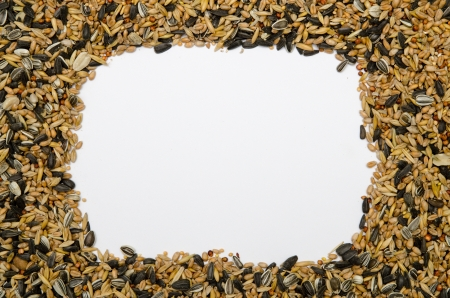 Framework of birdseed - background photo