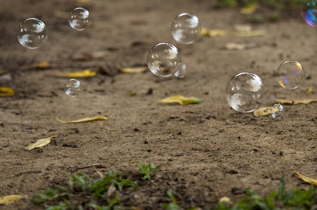 Soap bubbles float above ground Stock Photo