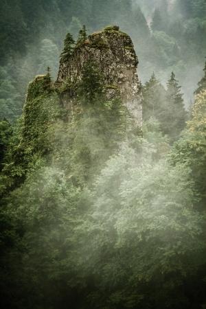 Beautiful green forest, rock, mist, mountain scene from Sumela Monastry at Trabzon, Turkey photo