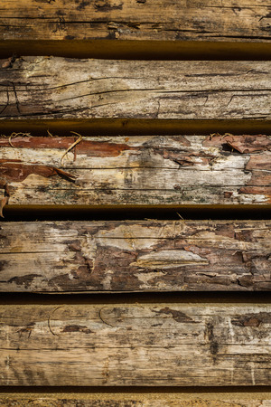 workable: Stacked wood pine timber for furniture production and construction Stock Photo