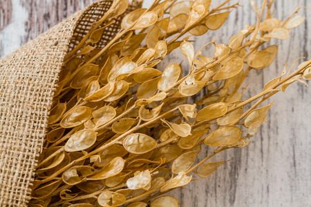 dried herbs: Bouquet of dried herbs on white wooden table