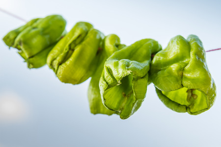 hanged: Hanged dry green chili peppers on natural sky background Stock Photo