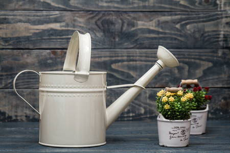wateringcan: Simple white metallic watering can on blue wooden background
