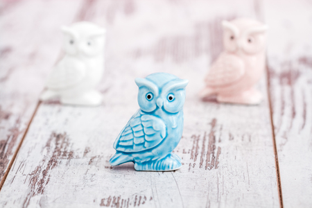 Porcelain owl figurines on white wooden background