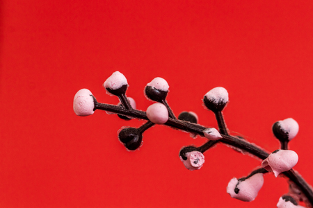Artificial pink plant in brown flowerpot on red background Stock Photo