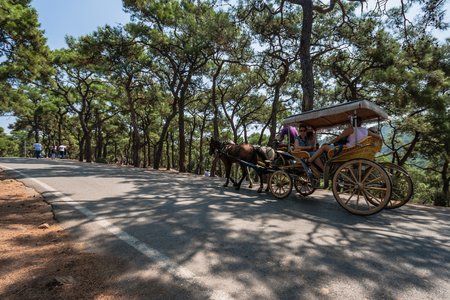 Istanbul, Turkey, 10 AUG 2010: Coach and horses in Buyukada, Princes Islands Editorial