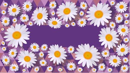daisy background purple 写真素材