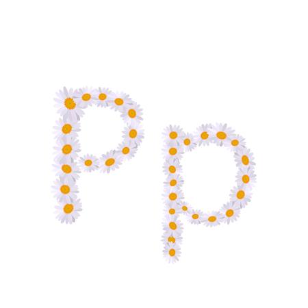 p letter daisy alphabet