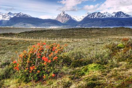 tierra del fuego: Colorful view in Tierra del Fuego Argentina