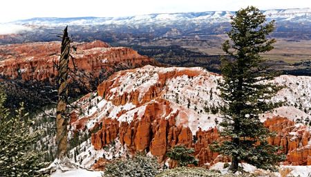 cold day: A cold day in Bryce Canyon