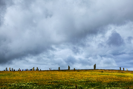 timelapse: The Ring of Brodgar in Orkney with blanket of flowers