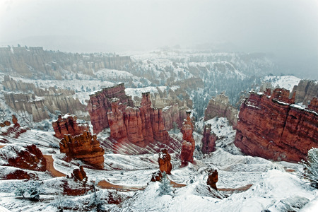 very cold: A very cold snowy day in Bryce Canyon