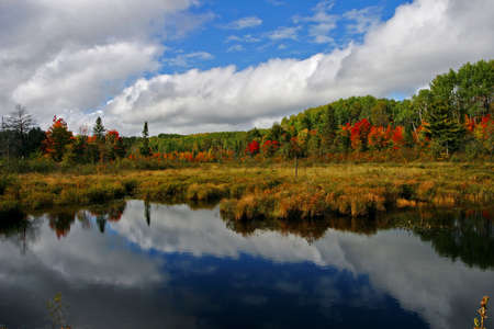 View of Reflections of autumn color at Algonquin, Canada