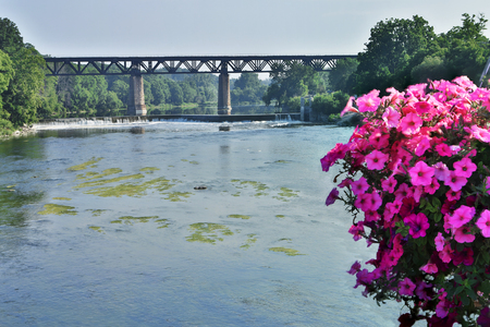 The Grand River at Paris, Ontario, Canada with flowers in foreground Stok Fotoğraf