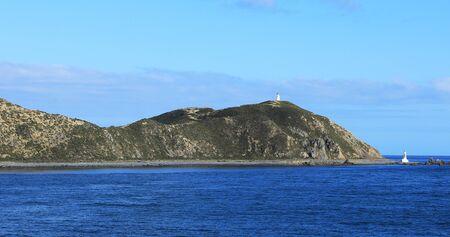 A Coastline scene in Cook Strait, New Zealand Stock fotó