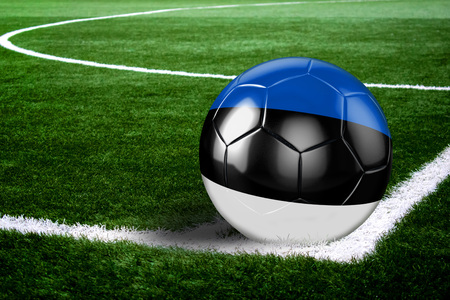 High quality render of soccer ball ready to shoot at at soccer field on green grasses. 3D rendering.