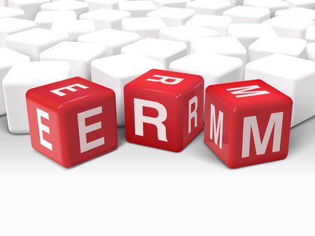 erm: 3d illustration dice with word ERM enterprise risk management on white background