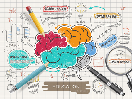 brain research: Education infographic template design with colorful brain in doodle style Illustration