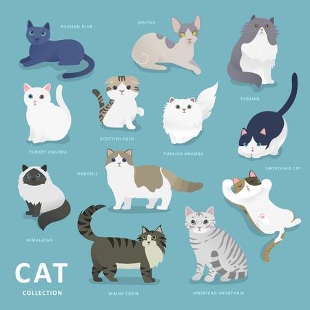 사랑스러운 고양이 플랫 스타일 컬렉션 품종 일러스트