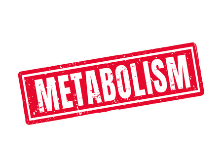 Metabolism in red stamp style, white background