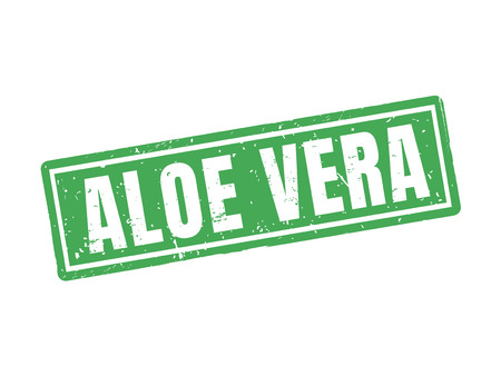 Aloe vera in green stamp style, white background