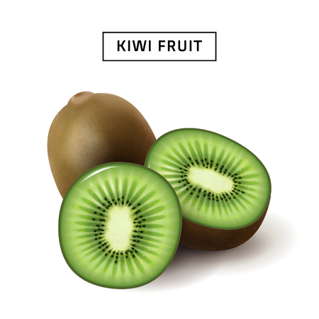 Kiwi fruit 3d illustration, close up fruit isolated on white background, sliced kiwi