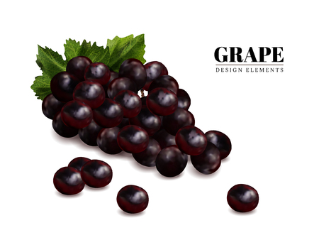 Fresh grape elements, close up look at fresh fruit isolated on white background