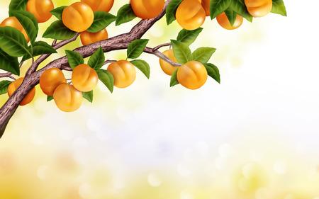 アプリコットの果樹園の背景、3 d イラストで背景のボケ味に分離された新鮮で魅力的なツリー