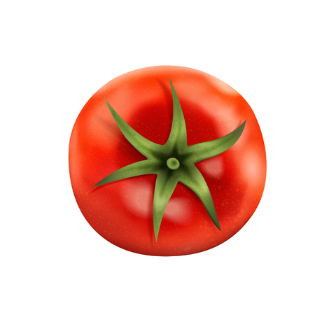 Top view of fresh tomato, delicious tomato isolated on white background in 3d illustration