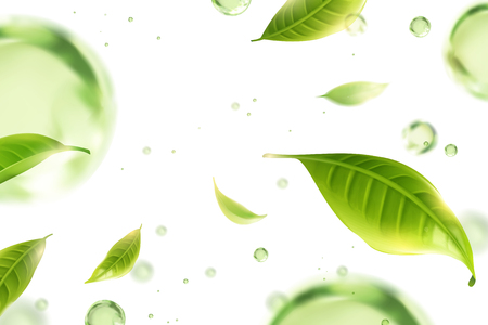 Flying green tea leaves and water drops on white background in 3d illustration