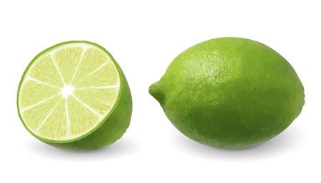 Limone con la sua sezione in 3d'illustrazione su sfondo bianco