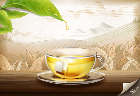 Green tea bag ads with 3d illustration glass cup of tea on engraved plantation background