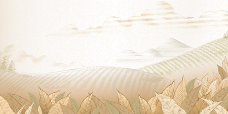 Tea plantation background in engraving style for design uses Illustration