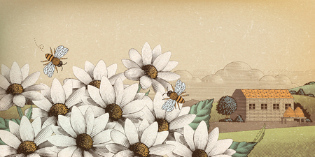 Vintage countryside scenery in engraving style, wildflower and bees