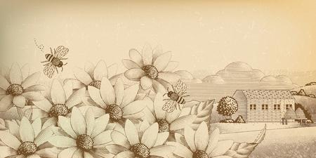 Paysages de campagne vintage dans le style de gravure, fleurs sauvages et abeilles Vecteurs