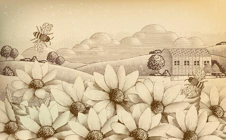 Paisaje de campo vintage en estilo grabado, flores silvestres y abejas