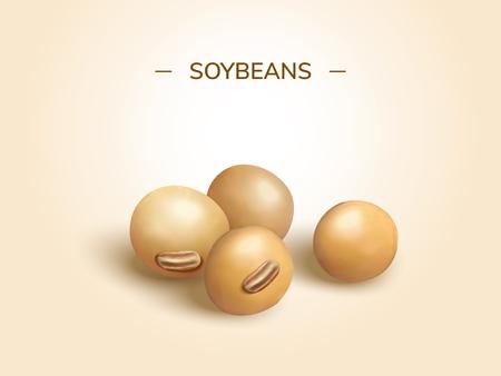 Sguardo del primo piano all'elemento di progettazione dei semi di soia nell'illustrazione 3d