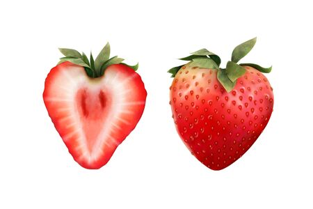 Sweet whole and half strawberry in 3d illustration on white background  イラスト・ベクター素材
