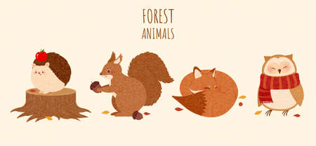 Set of autumn forest animal elements in cute hand drawn design, including owl, fox, squirrel and hedgehog, isolated on yellow background Illustration