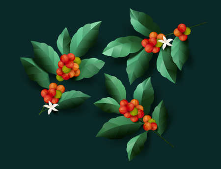 Red and green bean coffee fruit with leaves in paper art