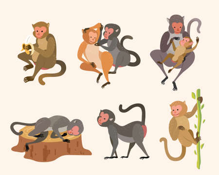 Cute animal collection of Taiwanese macaque or Formosan rock monkeys. Element in hand drawn or doodle design, isolated on white background.