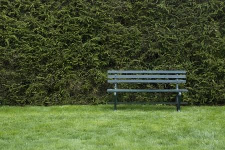 Een Lege Groene bank in de tuin